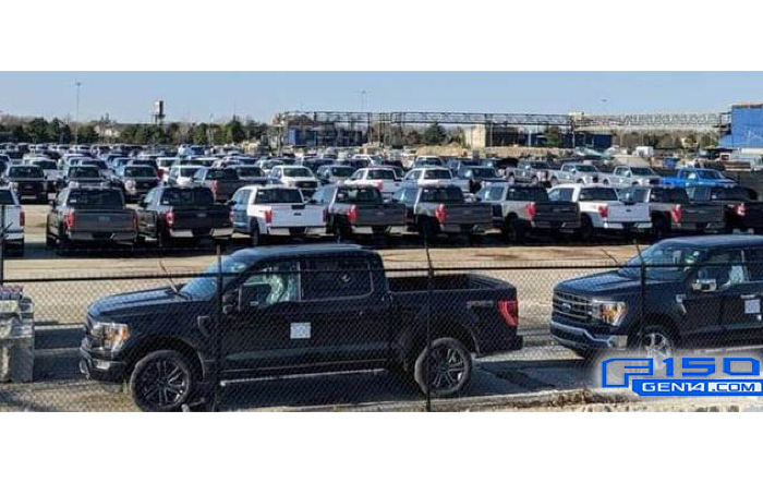 Lot Full of Production 2021 F-150 Awaiting Shipment. Do You Spot Yours?